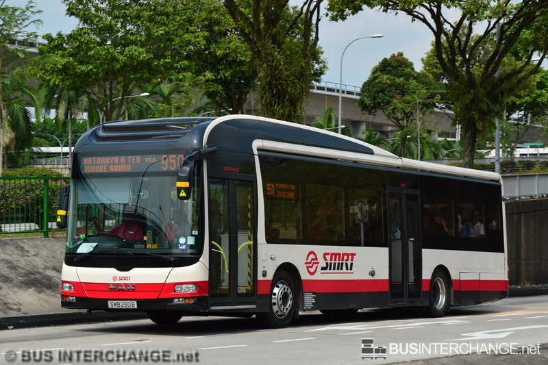 A MAN NL323F (A22) (SMB260B) operating on SMRT Buses bus service 950